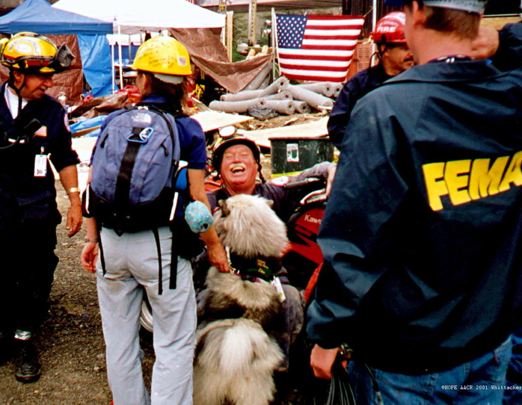 Shaggy dog with FEMA workers with hard hats on